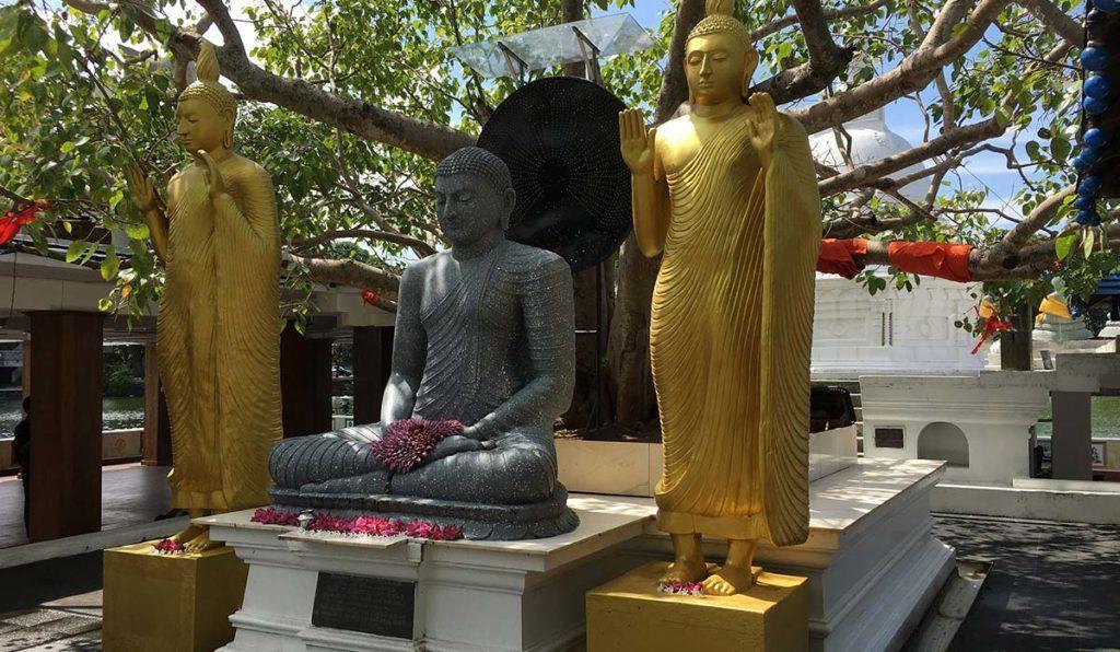 به کلمبو، پایتخت پرماجرای سریلانکا خوش آمدید!