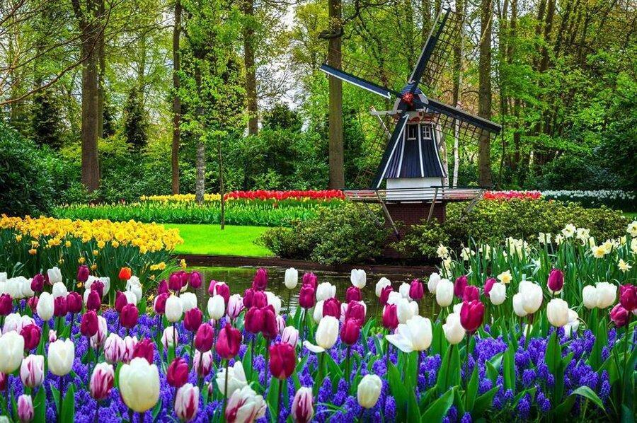 زیباترین باغ های دنیا را بشناسید ، از باغ سامورایی ها تا کاخ ورسای لوئیز چهاردهم