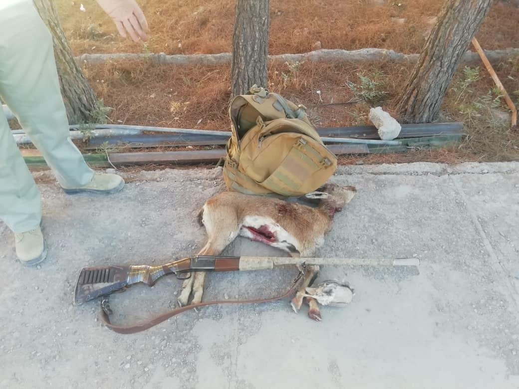 دستگیری یک شکارچی متخلف در کرمان