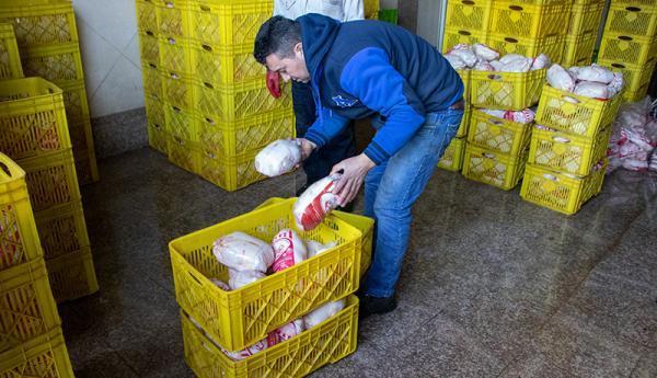 مرغ تا خاتمه سال باز هم گران می گردد؟ ، نرخ متغیر مرغ ارتباطی به تولیدکننده ندارد