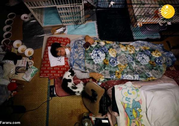 (تصاویر) مردی که گربه های فراموش شده فوکوشیما را نجات داد